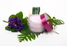 Cosmetic pink cream with herbs and flowers Royalty Free Stock Image