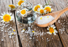 Cosmetic product of  chamomile:salt and oil Royalty Free Stock Photography