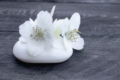 Cosmetic soap and white jasmine flowers with green leaves lie on a wooden background. There is a place for your text royalty free stock photography