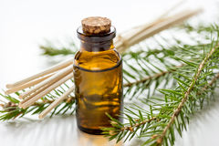 Cosmetic spruce oil in bottles with fur branches on white table background Stock Photography