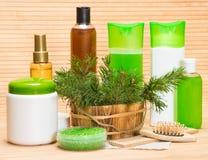 Cosmetici ed accessori naturali di cura di capelli Immagini Stock Libere da Diritti