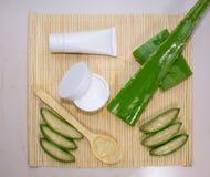 Cosmetici naturali da aloe vera, da crema, da oli e da tutto per la pelle Fotografia Stock Libera da Diritti