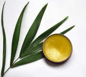 Cosmetici organici Fotografia Stock