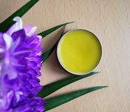 Cosmetici organici Fotografie Stock Libere da Diritti