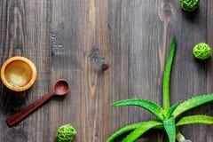 Cosmetici organici di vera dell'aloe Foglie di vera dell'aloe e sale della stazione termale sul copyspace di legno di vista super Fotografie Stock