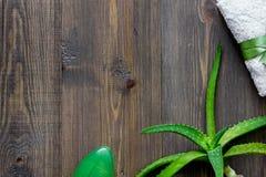 Cosmetici organici di vera dell'aloe L'aloe vera copre di foglie e sapone sul copyspace di legno di vista superiore del fondo del Immagini Stock Libere da Diritti