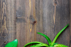 Cosmetici organici di vera dell'aloe L'aloe vera copre di foglie e sapone sul copyspace di legno di vista superiore del fondo del Fotografia Stock Libera da Diritti