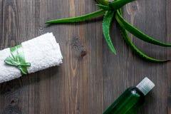 Cosmetici organici di vera dell'aloe L'aloe vera copre di foglie, vetro del succo di vera dell'aloe sul copyspace di legno di vis Immagini Stock Libere da Diritti