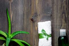 Cosmetici organici di vera dell'aloe L'aloe vera copre di foglie, vetro di aloe vera Fotografie Stock