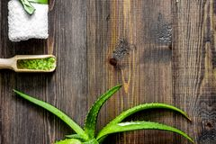 Cosmetici organici di vera dell'aloe Le foglie di vera dell'aloe ed il sale della stazione termale sopra corteggiano Fotografia Stock