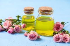 Cosmetici organici naturali Fotografia Stock Libera da Diritti