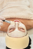 Cosmetician applying facial mask Stock Photography