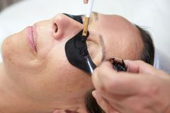 Cosmetician coloring eyelashes stock images