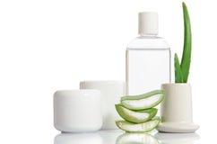 Cosmetico messo da aloe organico vera Immagine Stock Libera da Diritti