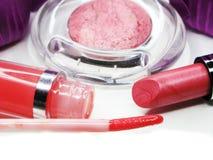 Cosmetico stabilito del gruppo dei lipgloss degli ombretti del rossetto per la molestia di trucco Immagine Stock