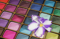 Cosmetics. Colorful set ofeyshadows with violet on it Stock Photos