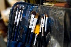 Cosmetics brushes. Cosmetics professional brush set with shadows Stock Image