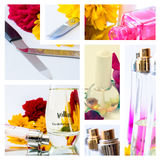 Cosmetics collage Stock Photography