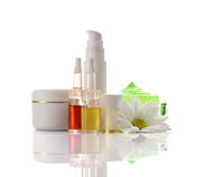 Cosmetics collection with chamomile Stock Photos