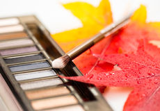 Cosmetics compact with brush and fall leaves Royalty Free Stock Photo