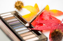Cosmetics compact with fall leaves Stock Images