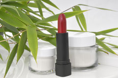 Cosmetics and green leaves Stock Photography