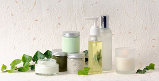 Cosmetics with ivy Royalty Free Stock Photography