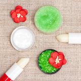 Cosmetics for lip skin care Stock Image