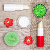 Cosmetics for lip skin care Stock Images