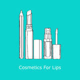 Cosmetics for Lips Royalty Free Stock Images