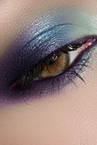 Cosmetics, macro eye make-up. Fashion sea shadows Royalty Free Stock Photography