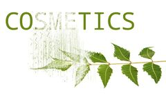 Cosmetics from neem Royalty Free Stock Photography