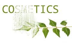 Cosmetics from neem royalty free illustration