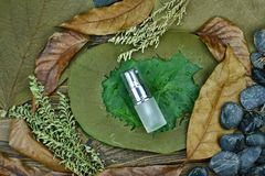 Cosmetics by pure natural plant, Organic beauty spa product on green leaf. Cosmetics by pure natural plant, Organic beauty spa product on green leaf, Skincare stock photo
