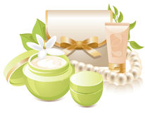 Cosmetics (skin care) Stock Image