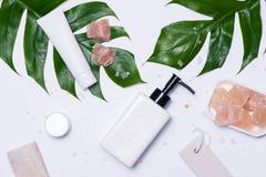 Cosmetics SPA μαρκάροντας πρότυπο, τοπ άποψη, στο άσπρο υπόβαθρο Στοκ Εικόνες