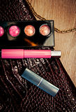 Cosmetics and women`s accessories Stock Image
