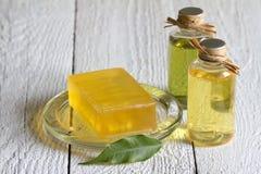 Cosmetisc para el cuidado y la higiene del cuerpo en los tablones blancos Fotografía de archivo libre de regalías