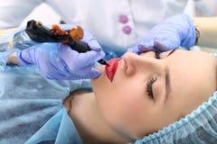 Cosmetologist, der dauerhaftes Make-up auf dem Gesicht der Frau macht lizenzfreie stockfotos