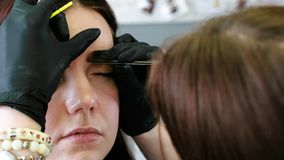 Cosmetologist performs the procedure of correction eyebrow with tweezers. Front closeup view. Cosmetologist performs the procedure of correction eyebrow with stock footage