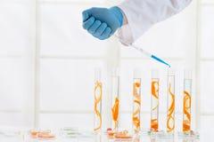 Cosmetology lab stock image
