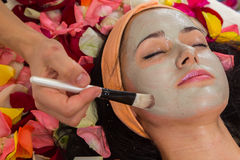 Cosmetology spa facial Royalty Free Stock Photo