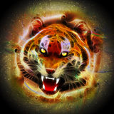 Cosmic Fire Tiger Roar. Fierce Roaring Wild Tiger Portrait involved on a Surreal Fantasy Cosmic Fire, like floating on a Galaxy. Original Vector Art, reworked on Royalty Free Stock Image