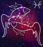 Cosmos fish constellation of the stars and gems Stock Photos