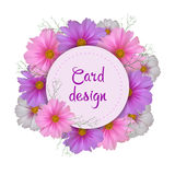 Cosmos flower card design. Round invitation. Vector illustration Stock Photography