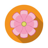 Cosmos Flower Flat Icon with shadow Stock Image