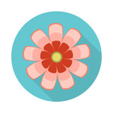 Cosmos Flower Flat Icon with shadow Stock Photos