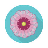 Cosmos Flower Flat Icon with shadow Royalty Free Stock Photos