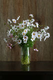 Cosmos Flowers Bouquet in Glass Vase Bunch on Dark Background Royalty Free Stock Photos