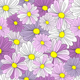 Cosmos flowers seamless background pattern Stock Photo